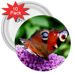 Peacock Butterfly 3  Buttons (10 Pack)  by trendistuff