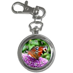 Peacock Butterfly Key Chain Watches