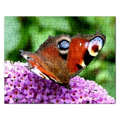 Peacock Butterfly Rectangular Jigsaw Puzzl by trendistuff