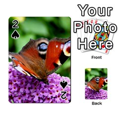 Peacock Butterfly Playing Cards 54 Designs