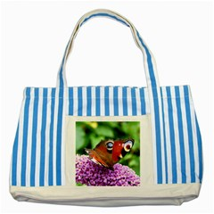 Peacock Butterfly Striped Blue Tote Bag  by trendistuff