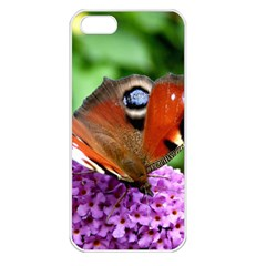 Peacock Butterfly Apple Iphone 5 Seamless Case (white) by trendistuff