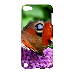 Peacock Butterfly Apple Ipod Touch 5 Hardshell Case by trendistuff