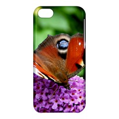 Peacock Butterfly Apple Iphone 5c Hardshell Case by trendistuff