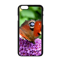 Peacock Butterfly Apple Iphone 6/6s Black Enamel Case