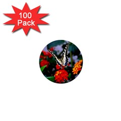 Butterfly Flowers 1 1  Mini Buttons (100 Pack)  by trendistuff