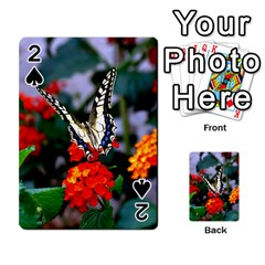 Butterfly Flowers 1 Playing Cards 54 Designs  by trendistuff