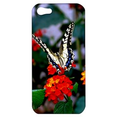 Butterfly Flowers 1 Apple Iphone 5 Hardshell Case by trendistuff