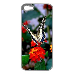 Butterfly Flowers 1 Apple Iphone 5 Case (silver) by trendistuff