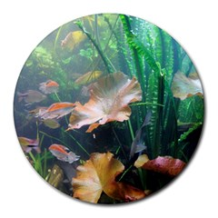 Marine Life Round Mousepads by trendistuff