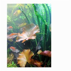 Marine Life Small Garden Flag (two Sides) by trendistuff