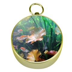 Marine Life Gold Compasses by trendistuff