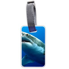 Great White Shark 3 Luggage Tags (one Side)  by trendistuff