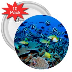 Fr Frigate Shoals 3  Buttons (10 Pack)  by trendistuff