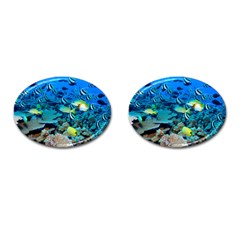 Fr Frigate Shoals Cufflinks (oval) by trendistuff