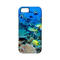 Fr Frigate Shoals Apple Iphone 5 Classic Hardshell Case (pc+silicone) by trendistuff