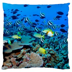 Fr Frigate Shoals Large Flano Cushion Cases (one Side)  by trendistuff