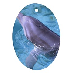 Dolphin 2 Oval Ornament (two Sides) by trendistuff