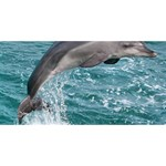 DOLPHIN ENGAGED 3D Greeting Card (8x4)  Back