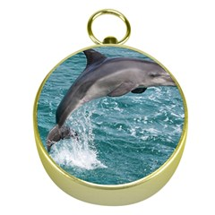 Dolphin Gold Compasses by trendistuff
