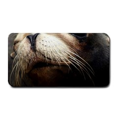 Cute Sea Lion Medium Bar Mats by trendistuff