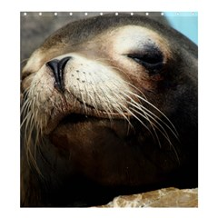 Cute Sea Lion Shower Curtain 66  X 72  (large)  by trendistuff
