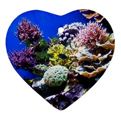 Coral Outcrop 1 Ornament (heart)  by trendistuff