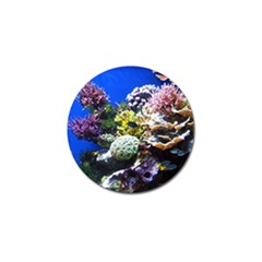 Coral Outcrop 1 Golf Ball Marker (4 Pack)