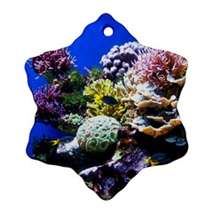 Coral Outcrop 1 Snowflake Ornament (2 Side)