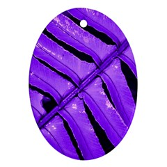 Purple Fern Oval Ornament (two Sides) by timelessartoncanvas