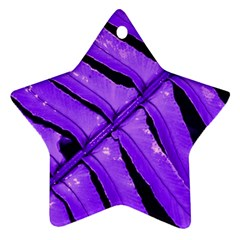 Purple Fern Star Ornament (two Sides)  by timelessartoncanvas
