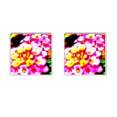 Dsc 01036 Cufflinks (square) by timelessartoncanvas