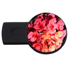 Dsc 0117666565 Usb Flash Drive Round (2 Gb)  by timelessartoncanvas
