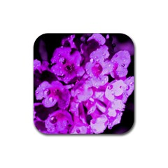 Dsc 01176665652 Rubber Square Coaster (4 Pack)  by timelessartoncanvas