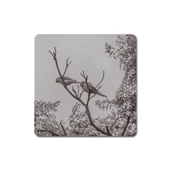 Couple Of Parrots In The Top Of A Tree Square Magnet by dflcprints