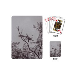 Couple Of Parrots In The Top Of A Tree Playing Cards (mini)