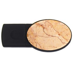 Stone Floor Marble Usb Flash Drive Oval (4 Gb)  by essentialimage