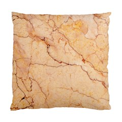 Stone Floor Marble Standard Cushion Case (one Side)  by essentialimage