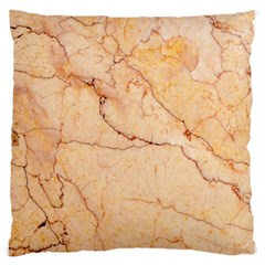 Stone Floor Marble Large Flano Cushion Cases (one Side)  by essentialimage