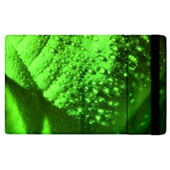 Green And Powerful Apple Ipad 2 Flip Case by timelessartoncanvas