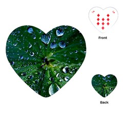 Morning Dew Playing Cards (heart)  by Costasonlineshop