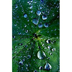 Morning Dew 5 5  X 8 5  Notebooks by Costasonlineshop