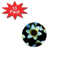 Light Blue Flowers On A Black Background 1  Mini Buttons (10 Pack)  by Costasonlineshop