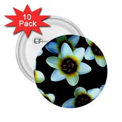 Light Blue Flowers On A Black Background 2 25  Buttons (10 Pack)  by Costasonlineshop