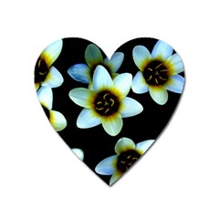 Light Blue Flowers On A Black Background Heart Magnet by Costasonlineshop
