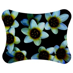 Light Blue Flowers On A Black Background Jigsaw Puzzle Photo Stand (bow) by Costasonlineshop