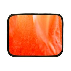 Floating Orange Netbook Case (small)  by timelessartoncanvas