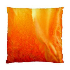 Floating Orange And Yellow Standard Cushion Cases (two Sides)  by timelessartoncanvas