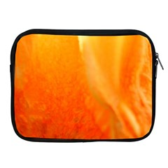 Floating Orange And Yellow Apple Ipad 2/3/4 Zipper Cases by timelessartoncanvas