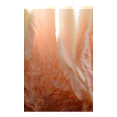 Floating Subdued Peach Shower Curtain 48  X 72  (small)  by timelessartoncanvas